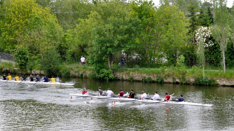 Rowing on the Thames